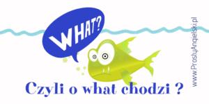 pytania-o-dni-miesiace-what
